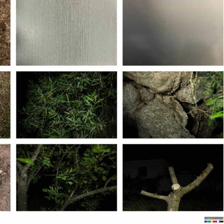 Miguel Proença • Way home · search for units in landscape photography · mp